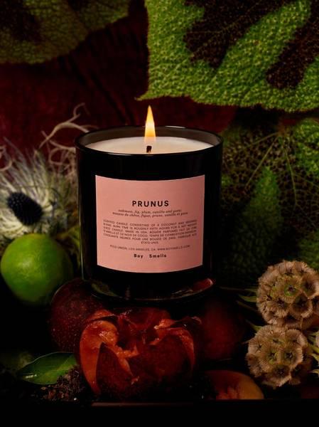 Bilde av Boy Smells Prunus